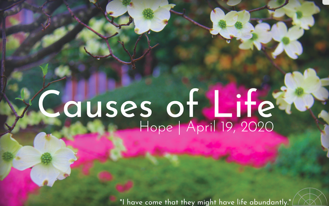 """Causes of Life: Hope,"" A Sermon by Alan Sherouse"