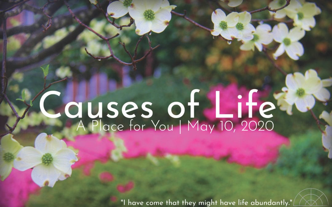 """Causes of Life: A Place for You"" A Sermon by Alan Sherouse"