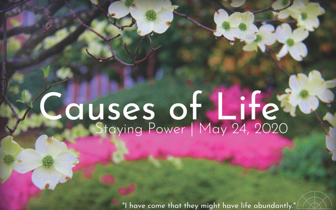 """Causes of Life: Staying Power"" A Sermon by Alan Sherouse"