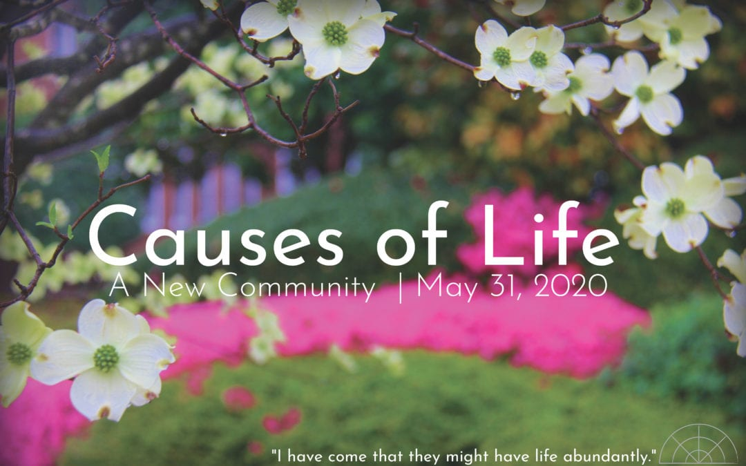 """""""Causes of Life: A New Community"""" A Sermon by Alan Sherouse"""