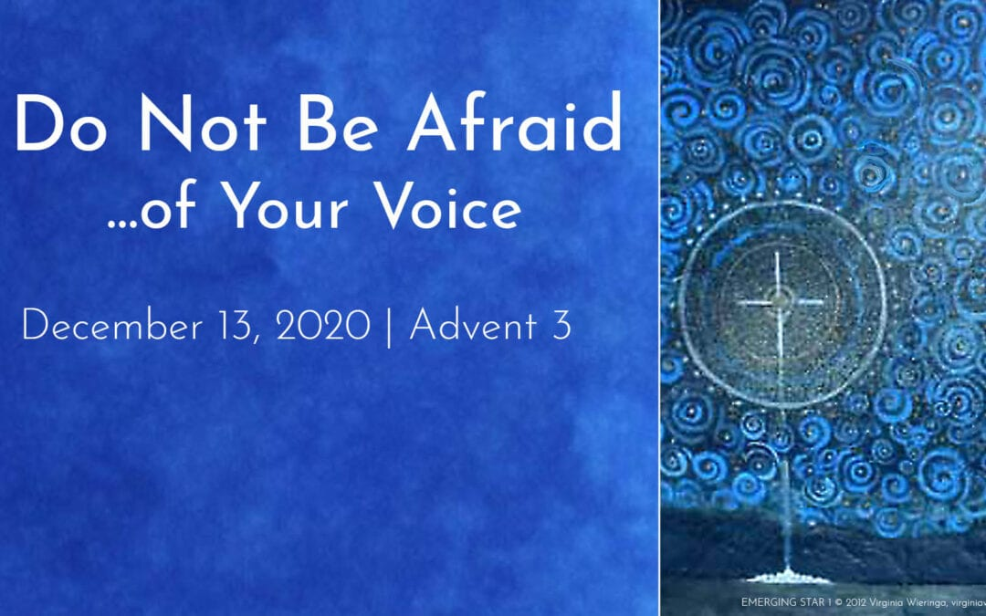 """""""Do Not Be Afraid… of Your Voice"""" A Sermon by Alan Sherouse"""