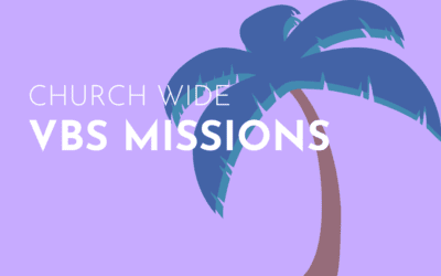 VBS Missions